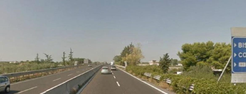 """Incidente 16 bis, la conducente sta bene. Si grida al miracolo. Alfonso Russo: """"Grazie per la vicinanza"""""""