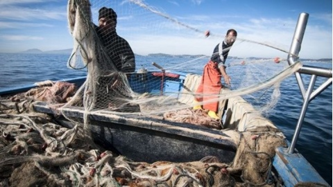 Stop a pesce fresco, scatta fermo pesca