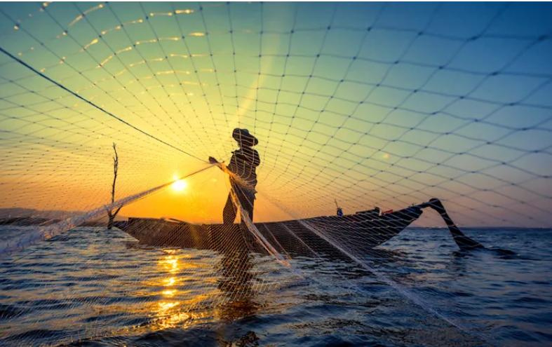 """GAL Ponte Lama, pesca sostenibile """"gambero bianco"""": domani a Bari la presentazione del piano d'azione"""